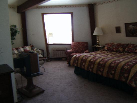 The Mill Inn: A view of the room