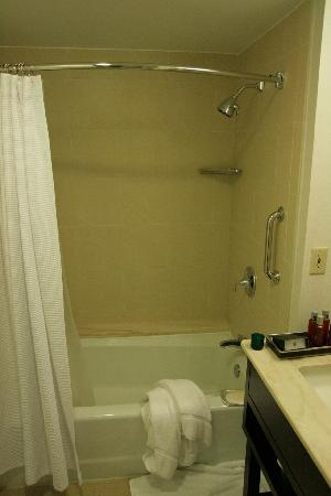 InterContinental Hotel Tampa: Room 828 bathroom 1