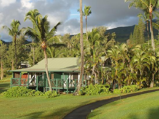 Hana Maui Hotel Cabins Picture Of