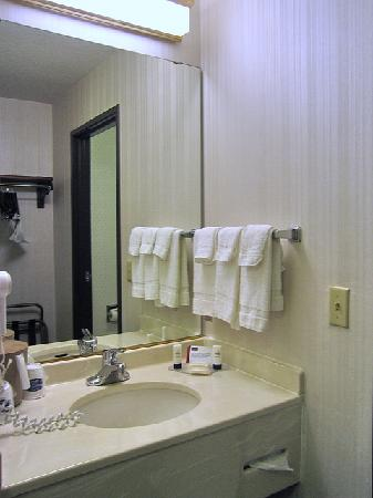 Fairfield Inn & Suites Portland Airport: Ansicht des Waschbeckenbereichs (im Zimmer, aber nicht im Eingangsbereich)