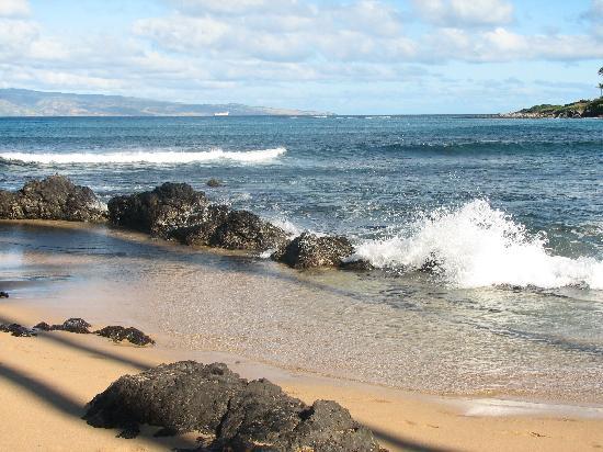 The Napili Bay: Napili Bay