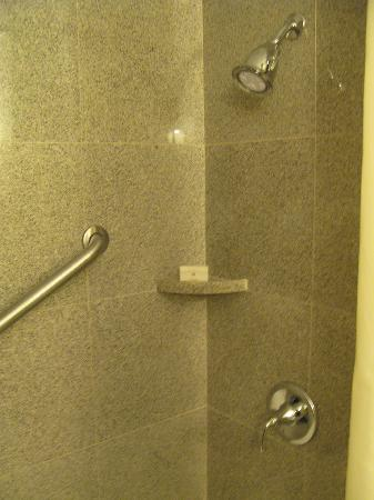 Wyndham Garden Baronne Plaza New Orleans: Shower