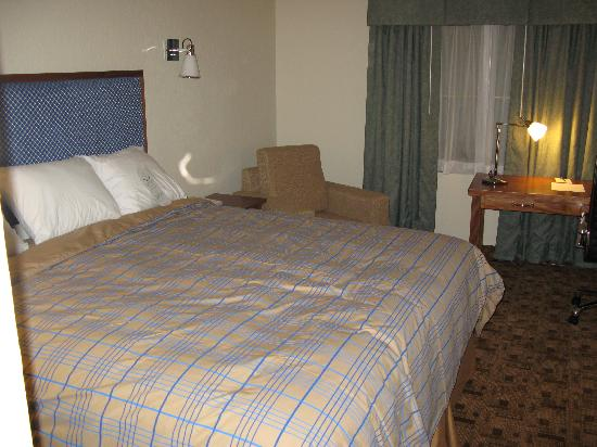 Wyndham Garden Baronne Plaza New Orleans: Room / Bed