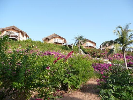 Cap Skiring, เซเนกัล: vue des villas de la plage