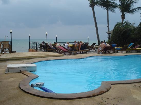 Samui Beach Resort: The beach front swimming pool
