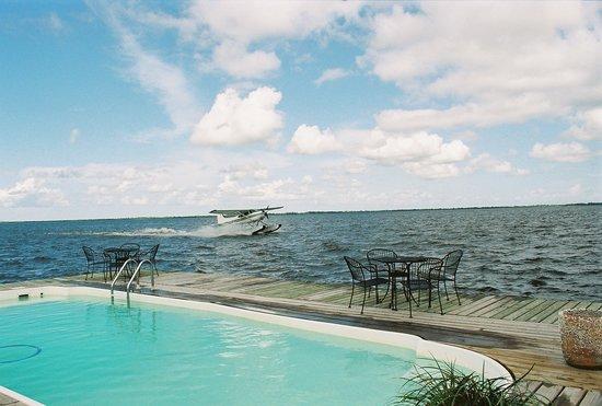 Victoria Inn and Gardens : Sea Plane Tour
