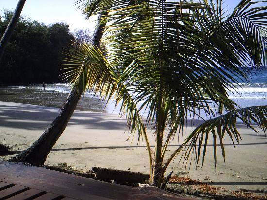 Scarborough, Tobago: Bacolet Bay