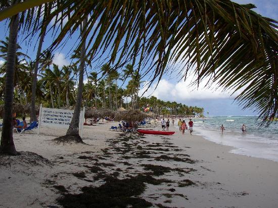 Natura Park Eco Beach Resort & Spa -