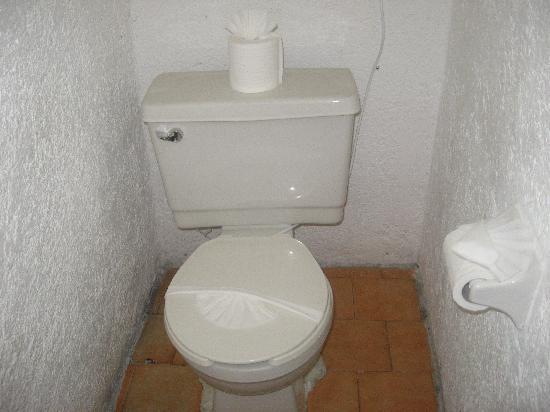 Grand Royal Lagoon: toilet paper art