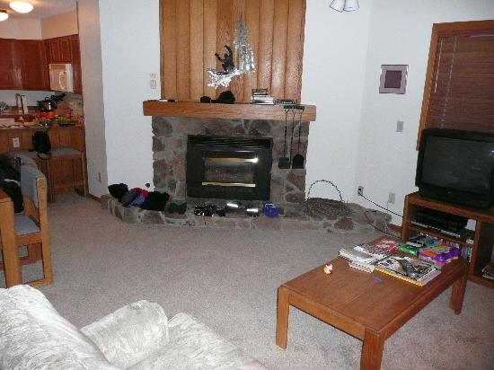 Woods Manor Condominiums : fireplace in 1 BR living area of Woods Manor condo