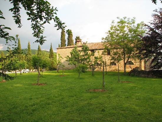 Agriturismo Natura e Salute: Back of the farmhouse