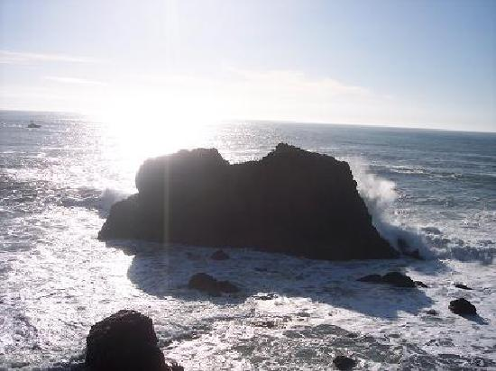 Bodega Dunes Campground: Bodega Bay