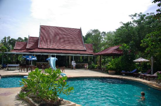 Holiday Villa: The pool