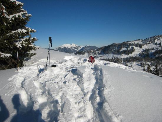 Waidring, Austria: auf der Höhe (nahe Steinplatte)