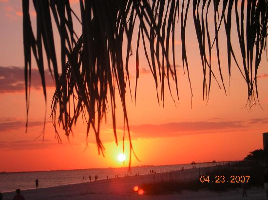 Red Coconut RV Park : Sunsets at the Red Coconut