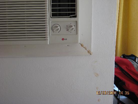 Hotel Rancho Luna: fourmis près de l'air cond..