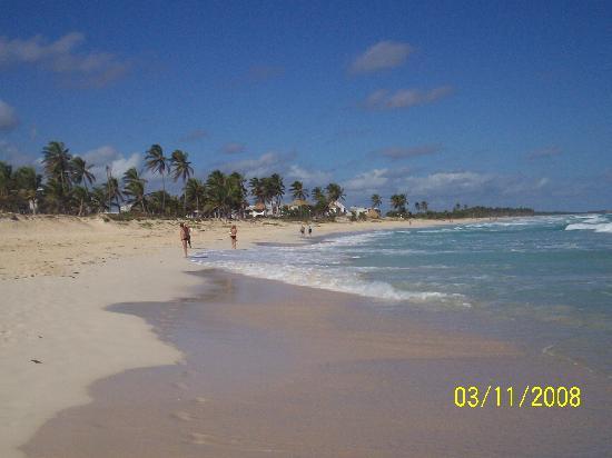 the beach WOW