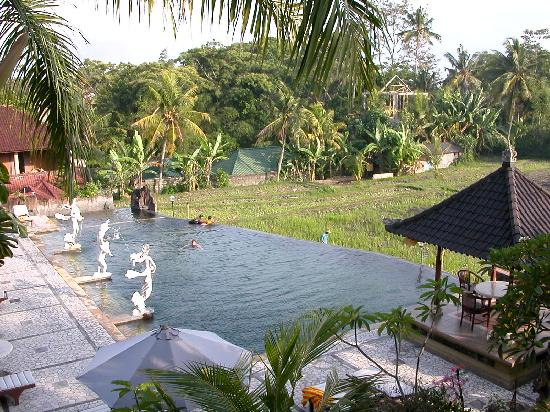 Cendana Resort and Spa: from the yoga area  salt pool and rice paddy