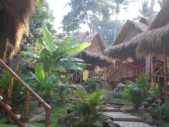 Little Eden Bungalows & Restaurant : view of the bungalows