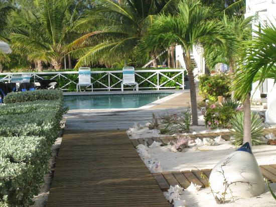 Conch Club Condominiums : A view of the boardwalk and second pool