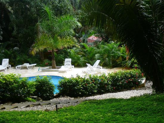 Esencia Hotel & Villas: piscina