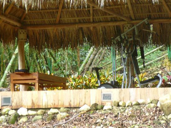 Esencia Hotel & Villas: palapa spa