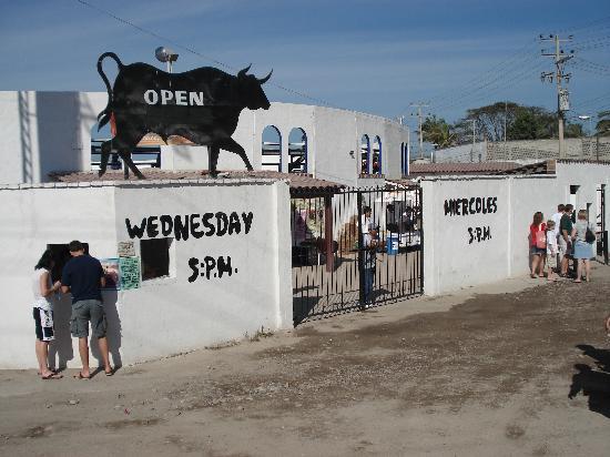 La Paloma Plaza de Toros: Bullfights at La Paloma