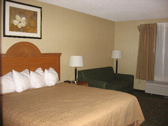 Quality Inn & Suites Fishkill: King Bed with sofa