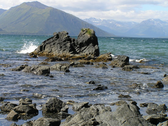 Wyspa Kodiak, AK: Saltery Cove
