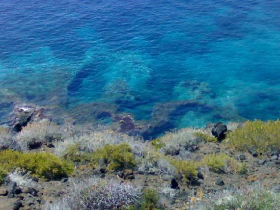 Di doccia salato  Nikà - sorgenti di acqua calda in mare - Picture of Pantelleria, Islands of  Sicily - Tripadvisor