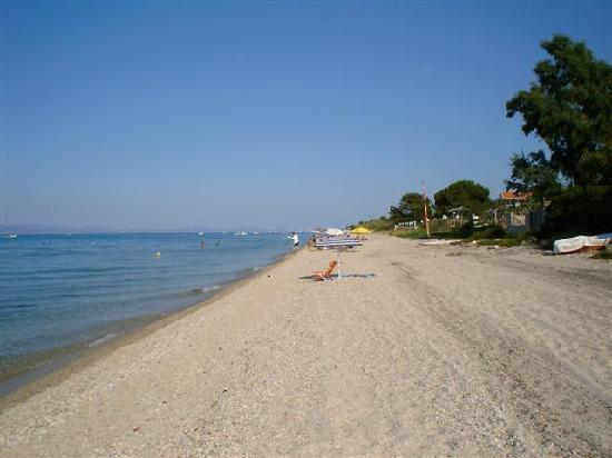 Diana Hotel : Beach on way to Hanioti