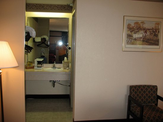 Quality Inn: vanity area
