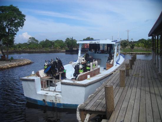 Deep Blue Resort Utila: dive boat