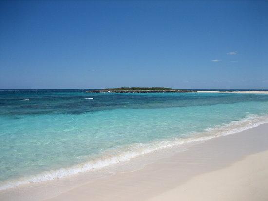 Eleuthera: pink sand beach