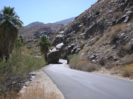 Palm Springs, Californie : Indian Canyons