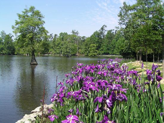 Sumter, Carolina del Sur: The Gardens