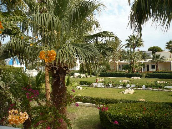 Triton Empire Beach Resort: View of the hotel gardens