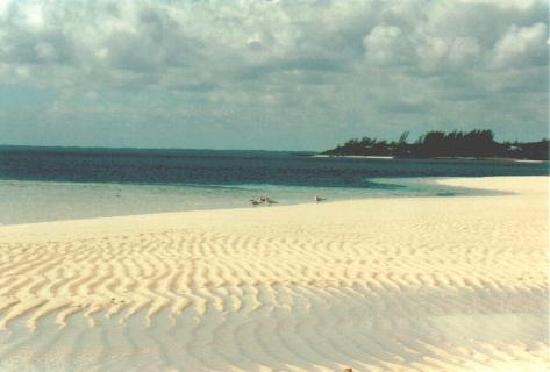 Herrlicher Strand Elbow Cay Bahamas