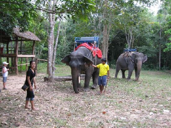 Anantara Si Kao Resort : Elephant Treking