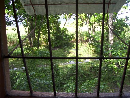 SunCampDR: View from Studio 3