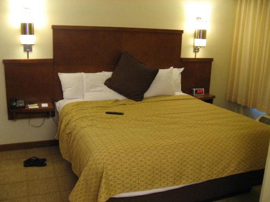 Hyatt Place Milford/New Haven: hyatt place rooms