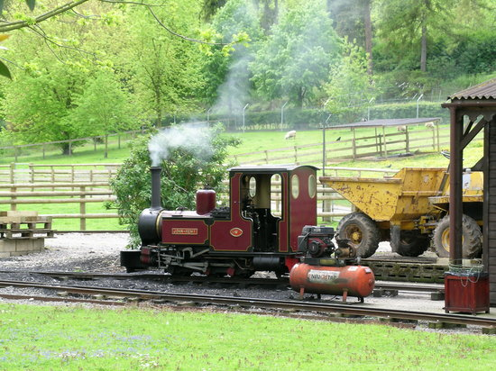 Reading, UK: Beale Park - miniature steam train