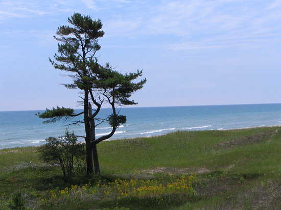 Sheboygan, Висконсин: Lake Michigan, on one of the nature trails