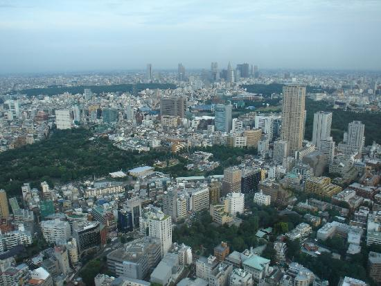 The Ritz-Carlton, Tokyo: View from window