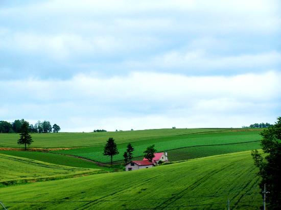 Hokkaido, Japón: Landscape