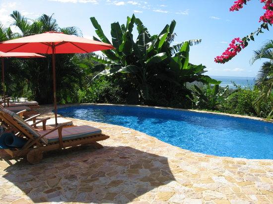 Casa Chameleon: Pool