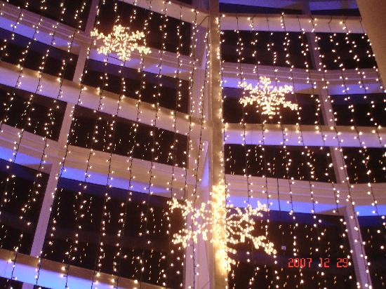 Bongos Cuban Cafe: winter lights