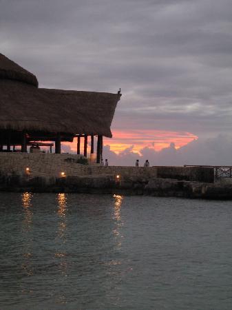 Presidente Inter-Continental Cozumel Resort & Spa: View of restaurant/bar