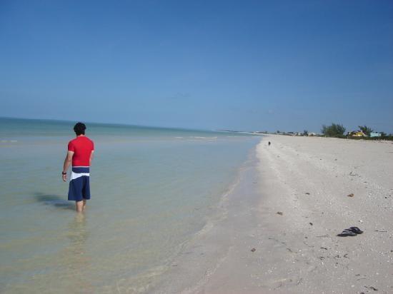 Hotel Manglares : the beach