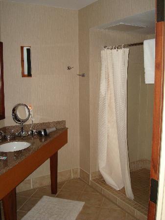 CopperLeaf Hotel : Shower